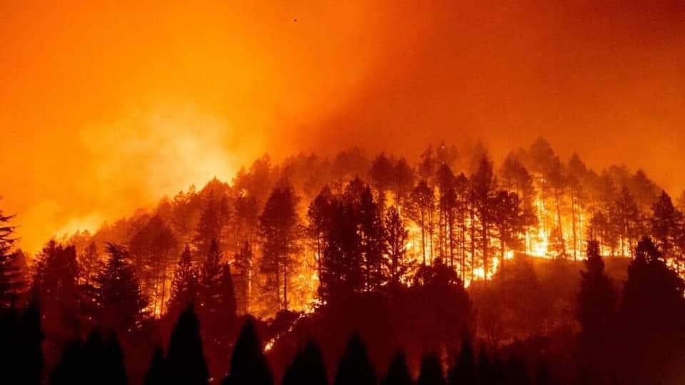 incendios forestales Monterrey